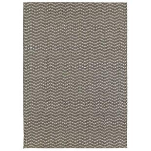 Dunmire Gray Indoor/Outdoor Area Rug
