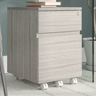 Carreiro Rolling 2-Drawer Vertical Filing Cabinet