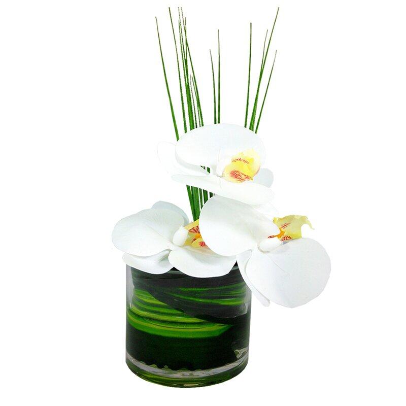 floral home decor orchid floral design wayfair.htm bloomsbury market phalaenopsis orchid floral arrangement in vase  phalaenopsis orchid floral arrangement