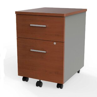 Lampert 2-Drawer Mobile Vertical Filing Cabinet