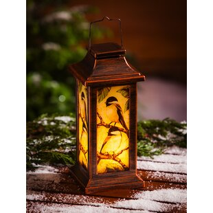 Affordable Winter Bird Solar 3 Piece Glass Lantern Set By August Grove