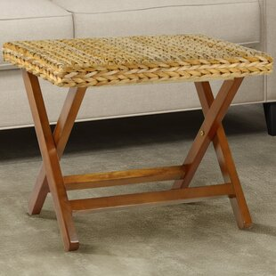 Nobles Folding Stool by Beachcrest Home