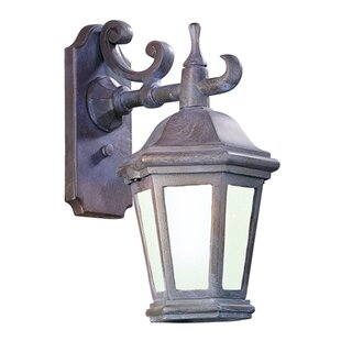 Darby Home Co Theodore 1-Light Outdoor Wall Lantern