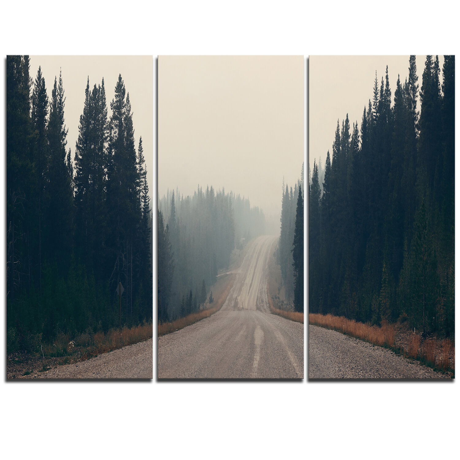 Designart Foggy Road In Forest In Banff Park 3 Piece Graphic Art On Wrapped Canvas Set Wayfair