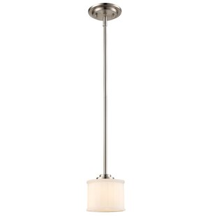 Darby Home Co Wedgewood 1-Light Drum Pendant