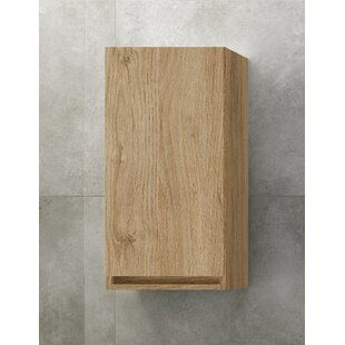 Gutirrez 27 X 70cm Wall Mounted Cabinet By 17 Stories