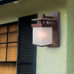 Andrew 1-Light Outdoor Sconce