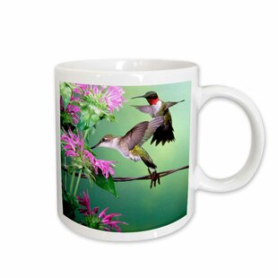 Ruby-throated Hummingbird Female and Male at Bee Balm Coffee Mug
