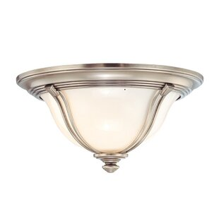 Darby Home Co Emjay Flush Mount