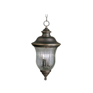 Astoria Grand Barrowbrook 3-Light Outdoor Hanging Lantern