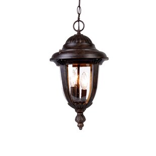Charlton Home Prestwood 3-Light Outdoor Hanging Lantern