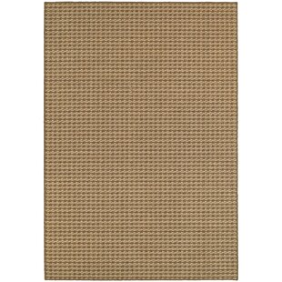 Davie Casual Brown Indoor/Outdoor Area Rug