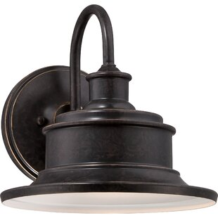 Cheyanne 1-Light Outdoor Barn Light