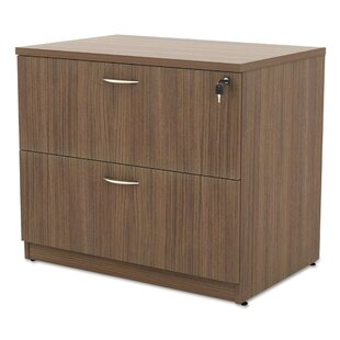 Kania 2-Drawer Lateral Filing Cabinet by Symple Stuff Coupon