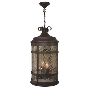 Look for Oakhill 4-Light Outdoor Hanging Lantern By Charlton Home