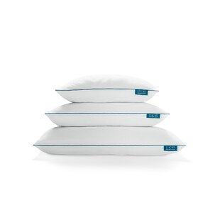Rhoades Medium Memory Foam Bed Pillow (Set of 2)