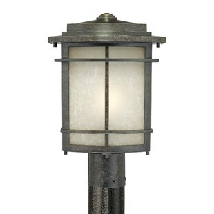 Millbrook Outdoor 1-Light Lantern Head in Imperial Bronze by Three Posts