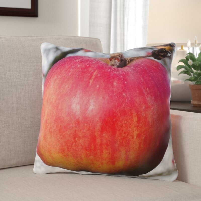 The Holiday Aisle Wall Street Apple Indoor Outdoor Throw Pillow Wayfair