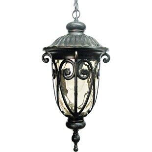 Grandstaff 1-Light Outdoor Hanging Lantern by Fleur De Lis Living