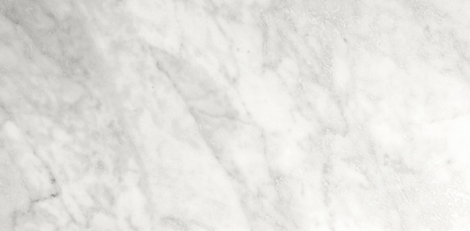 Emser Tile Marble 12 X 24 Field In Bianco Gioia Honed