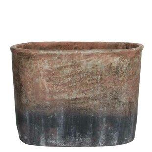 Paloalto Concrete Plant Pot By World Menagerie