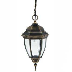 Camber 1-Light Outdoor Hanging Lantern By Astoria Grand