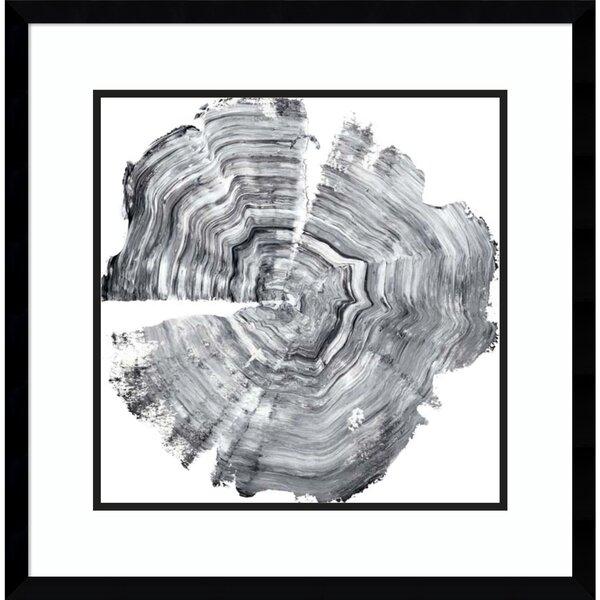 Modern & Contemporary Framed Tree Ring Art | AllModern