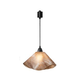 Looking for Dale Lily Track Lighting By Latitude Run