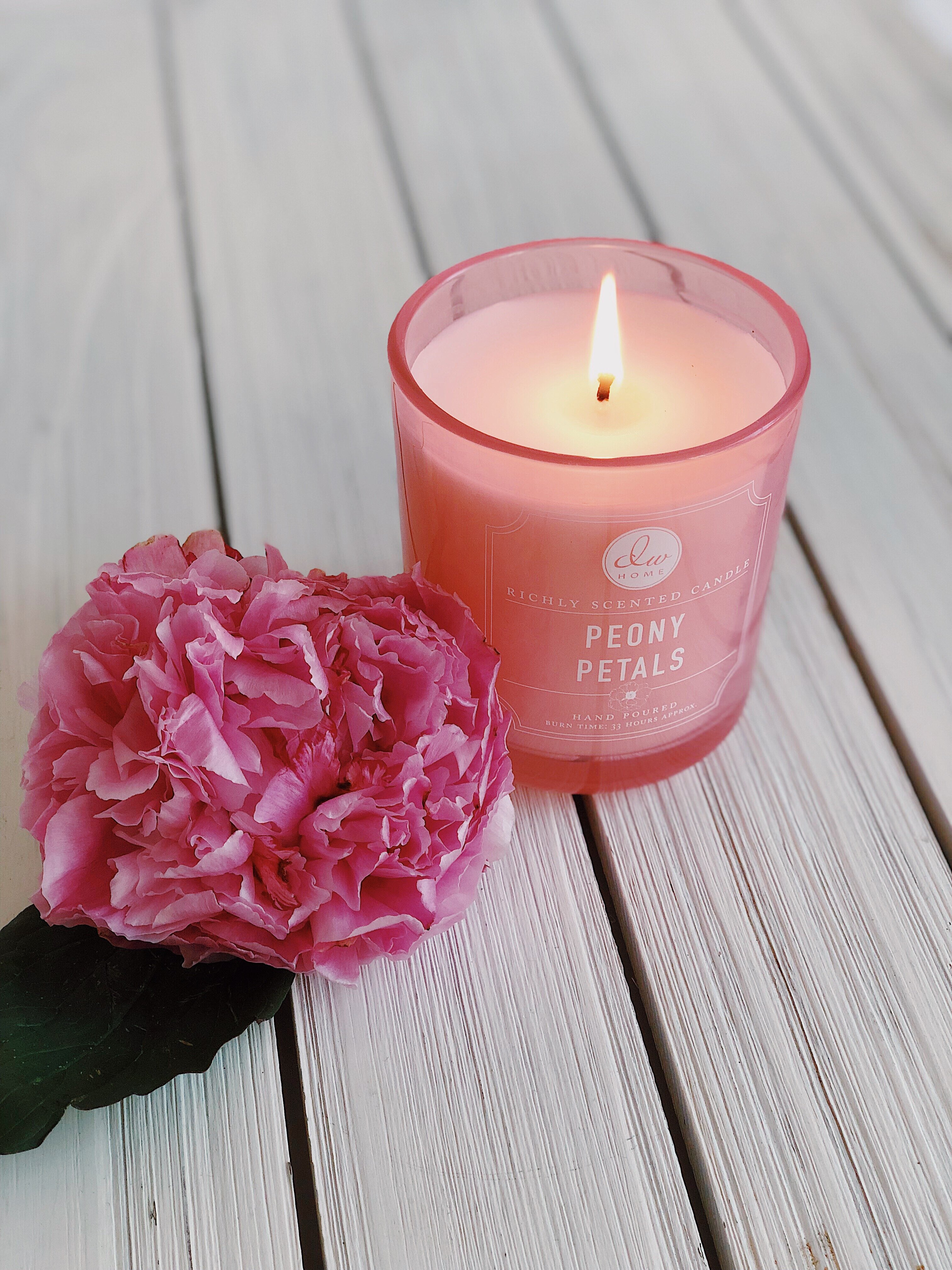 10pk PINK GRAPEFRUIT TRIPLE SCENTED TEA LIGHT CANDLES 60 hours//pack TROPICAL