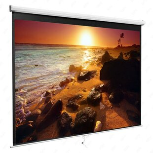 White 41 x 73 Manual WallCeiling Mounted Projector Screen