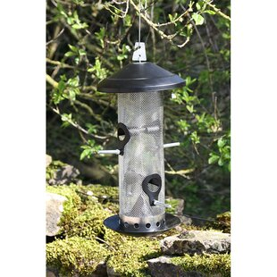 Linslade Nyjer/Thistle Feeder By Sol 72 Outdoor