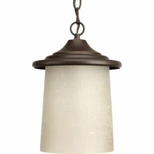 Bloomsbury Market Crestside 1-Light Outdoor Hanging Lantern