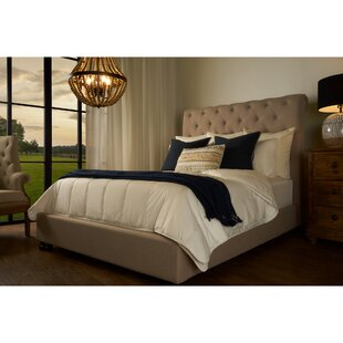 Patrick Upholstered Sleigh Bed