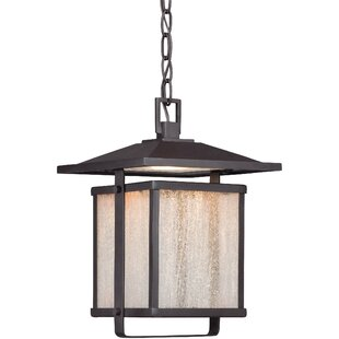 Olivarez 1-Light Outdoor Hanging Lantern By Brayden Studio Outdoor Lighting