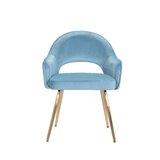 Arliss Velvet Upholstered Arm Chair by Everly Quinn