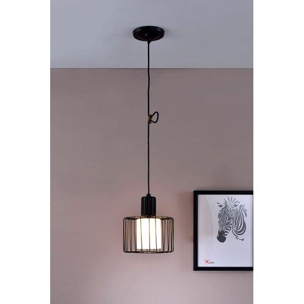 Wire Cage Pendant Light | Wayfair