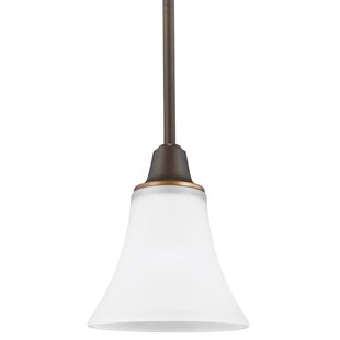 Irvona 1-Light Cone Pendant by Darby Home Co