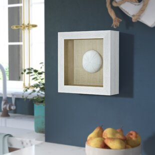 Amit Sea Urchin Shadow Box Wall Decor