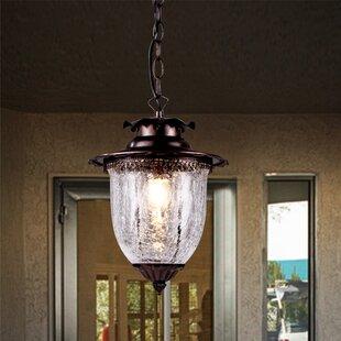 Outdoor Light Pendant Wayfair