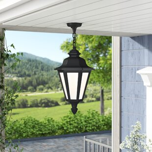 Palmdale 1-Light Outdoor Pendant by Darby Home Co