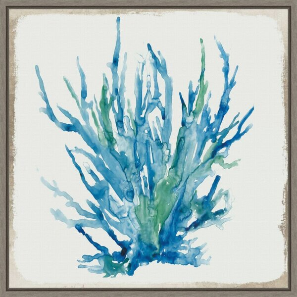 Rosecliff Heights Blue Coral Ii By Aimee Wilson Floater Frame Painting Print On Canvas Wayfair