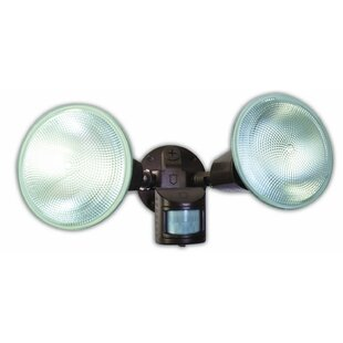 Coleman Cable Outdoor Security Flood Ligh..