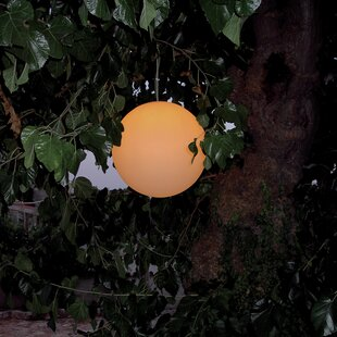 Snowball 1-Light Outdoor Pendant By EpsteinDesign