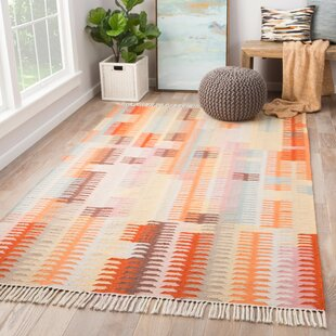 Afton Handwoven Flatweave Orange Indoor/Outdoor Area Rug