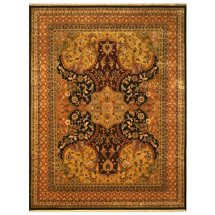 Nindaura Hand-Knotted Gold/Black Area Rug By Meridian Rugmakers