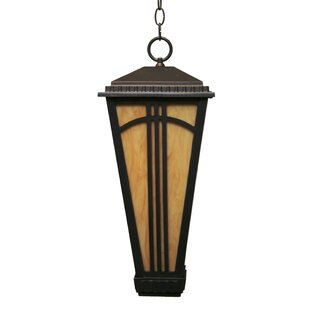 Petrey 1-Light Outdoor Hanging Lantern By Alcott Hill Outdoor Lighting
