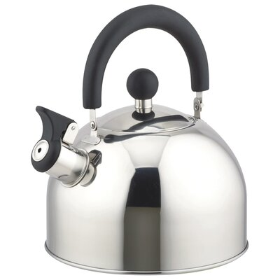 STAINLESS STEEL Stovetop Kettle