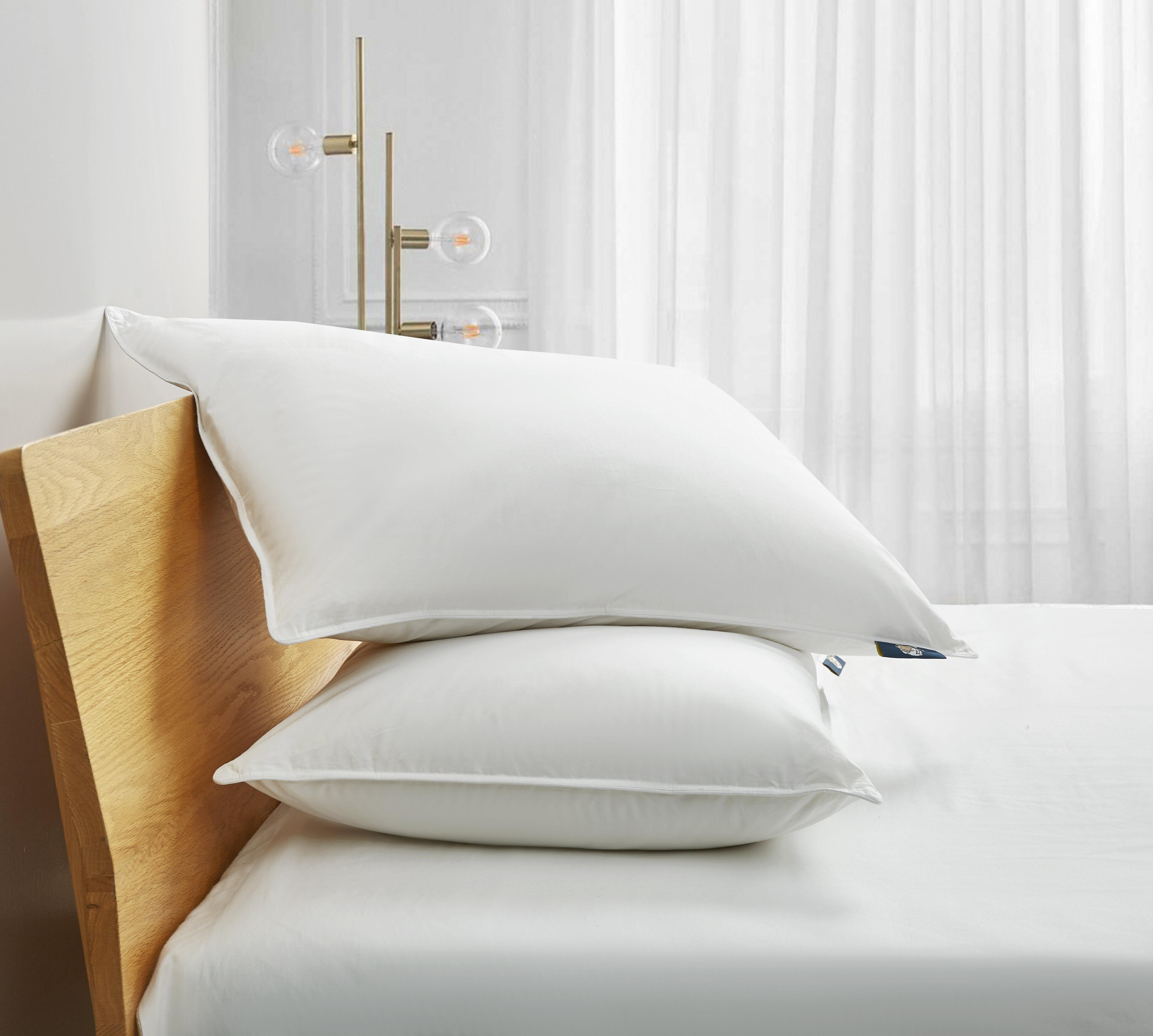 Bed Pillow Perfect Sleeper Serta Queen Hypoallergenic 100/% Cotton 2 PACK