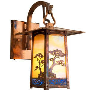Dever 1-Light Outdoor Wall Lantern
