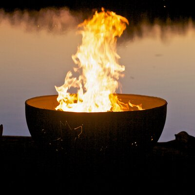 Fire Pit Art Funky Dog Steel Wood/Gas Fire Pit Ignition: Electronic, Fuel Type: Liquid Propane